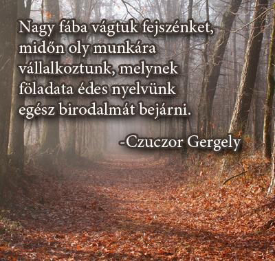 nyelvtannal kapcsolatos idézetek Idézetek a magyar nyelvvel kapcsolatban   a nyelvtan hónapjában!